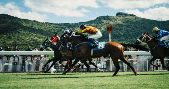 Startup Company & Horse Racing side by side